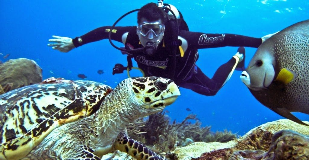best scuba diving in thailand